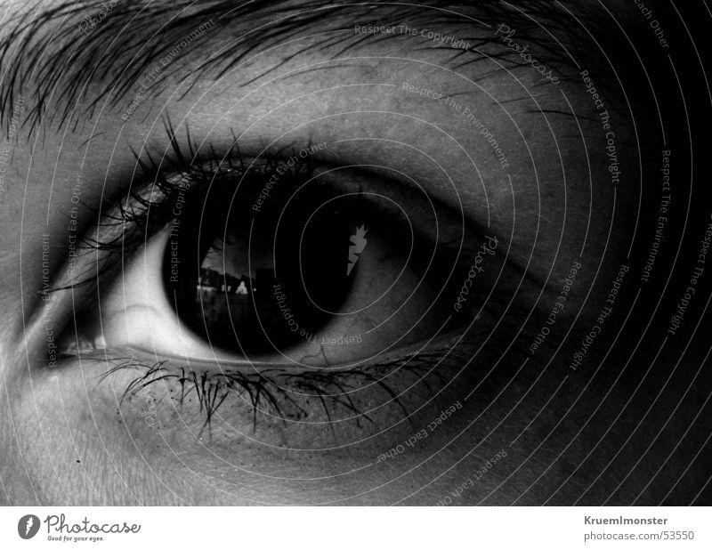 black eye Pupille Wimpern schwarz Augenbraue geheimnisvoll Schwarzweißfoto Aussicht Blick
