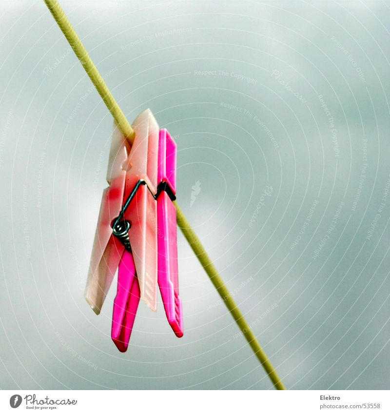 heute wirds eh nicht trocken Himmel Erholung rosa Seil paarweise Bekleidung Kunststoff fest trocken hängen Wäsche Sportveranstaltung trocknen Haushalt Textilien Konkurrenz