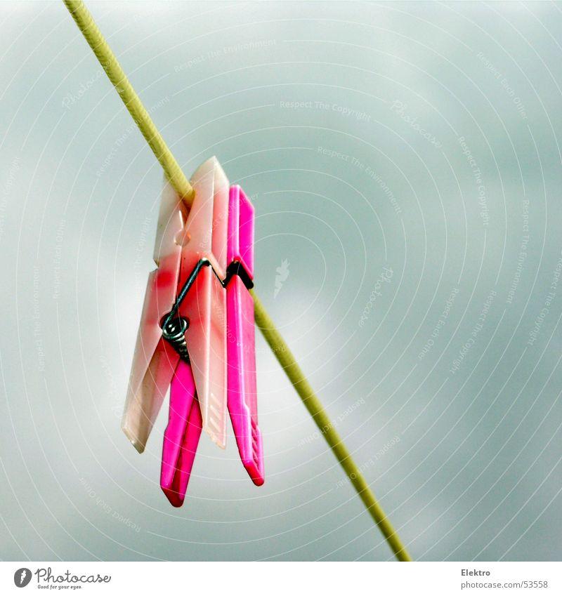 heute wirds eh nicht trocken Wäscheklammern Seil trocknen trüb rosa Klammer fest hängen Kunststoff Textilien Bekleidung Haushalt Sportveranstaltung Konkurrenz