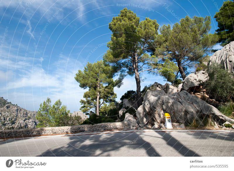 Kilometer 10 Umwelt Natur Landschaft Pflanze Himmel Schönes Wetter Wärme Baum Felsen Berge u. Gebirge Insel ästhetisch Pinie Wald blau grün Straße