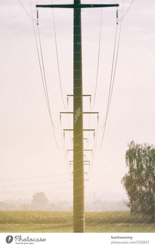 Freileitungsmasten im Morgendunst Natur grün Baum Landschaft gelb Wiese Herbst Stein orange Feld gold Energiewirtschaft Schönes Wetter Elektrizität Technik & Technologie Bauwerk