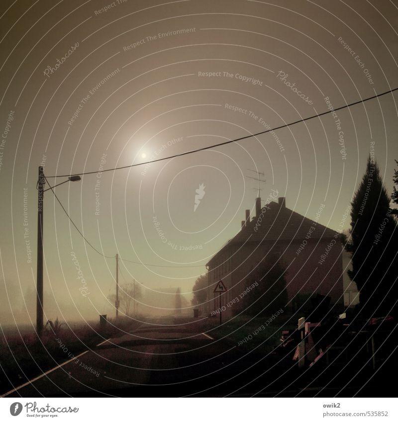 Ist da jemand? Sonne Baum Einsamkeit Haus dunkel kalt Straße Wege & Pfade Horizont glänzend Energiewirtschaft Nebel Verkehr Vergänglichkeit Unendlichkeit geheimnisvoll