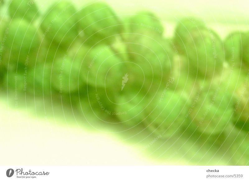 rosenkohl grün Hintergrundbild frisch Gemüse Fototechnik