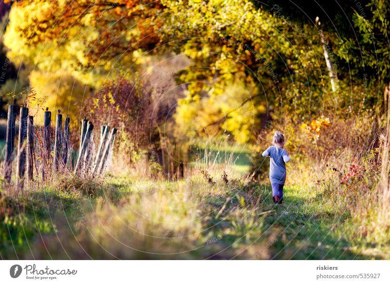 mit strammen schritten durch den herbst :) Mensch Kind Natur Erholung Landschaft Mädchen Wald Umwelt Wiese feminin Herbst natürlich gehen Park Feld Kindheit