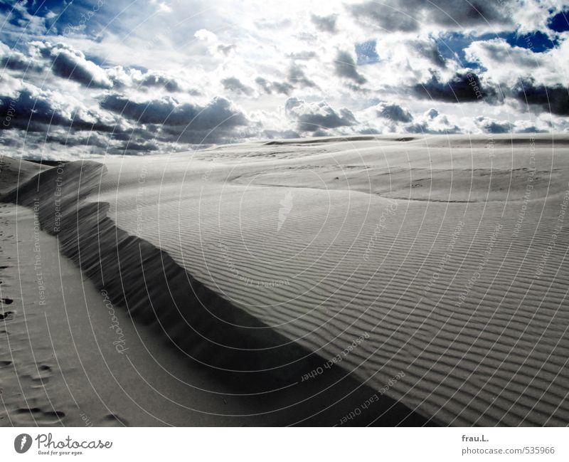 Polnische Sahara Ferien & Urlaub & Reisen wandern Natur Landschaft Sand Sonnenlicht Wojewodschaft Pomorskie Polen Europa Unendlichkeit schön Stimmung