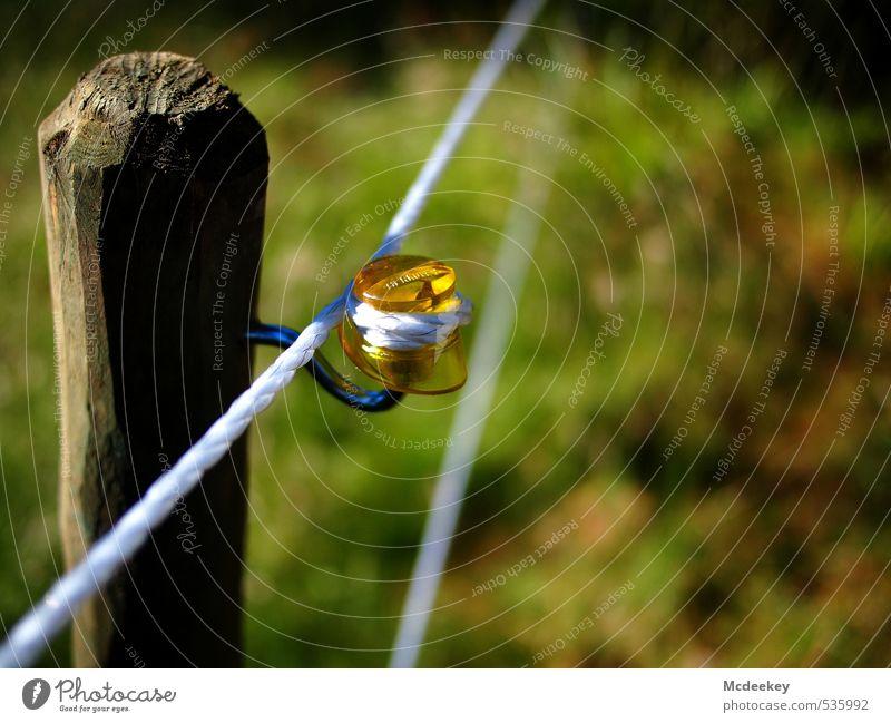 Anfassen nicht empfohlen! blau grün weiß schwarz gelb Wiese Gras grau Holz Metall braun orange Feld stehen Elektrizität bedrohlich