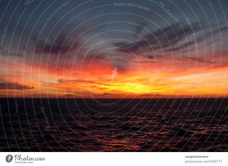Sonnenuntergang über Neuseeland Umwelt Natur Landschaft Wasser Wolken Sonnenaufgang Sommer Cook Strait Südinsel schön orange rot schwarz Feiertag Meer Wellen
