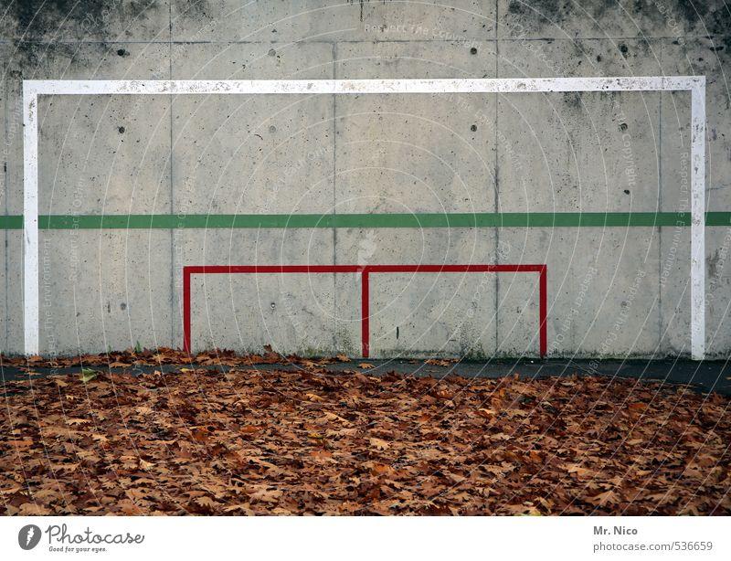 Das Tor steht in der Mitte* grün weiß Pflanze rot Blatt Umwelt Wand Sport Herbst Mauer Spielen Linie dreckig Fußball Fitness Herbstlaub