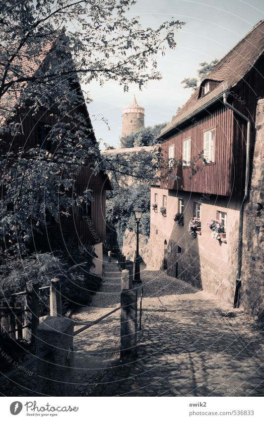 Steile Gasse Himmel alt Baum Blatt Haus Fenster Wand Frühling Mauer Holz Stein Deutschland Fassade Idylle Turm Neigung