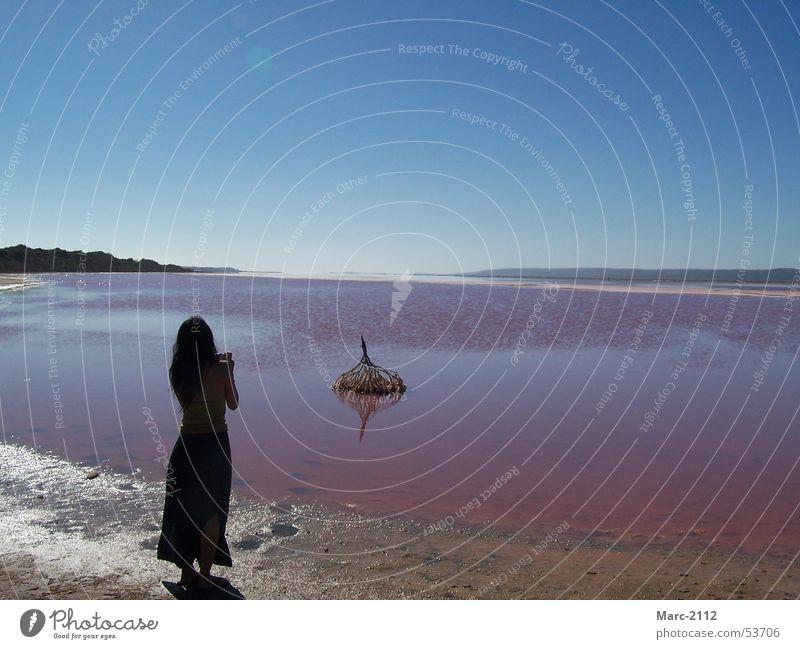 Pink Lake Wasser Himmel Meer See rosa Australien Salz