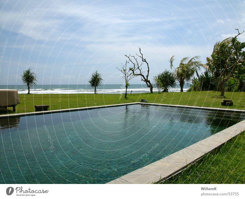 Bali Pool Wasser Himmel Meer Ferien & Urlaub & Reisen Wiese Wellen Schwimmbad Aussicht Indonesien