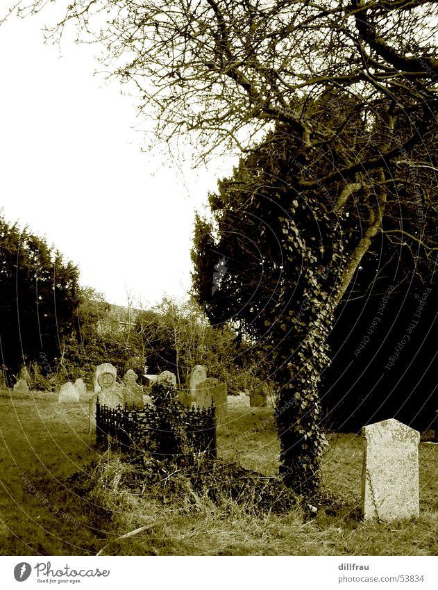 Graveyard Part Two Religion & Glaube Grab Grabstein Baum Sarg Trauer Friedhof untot Einsamkeit ruhig England Wiese Stillleben Götter Teufel trösten Damp feucht