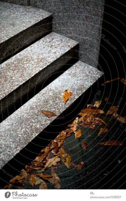durch die nacht Herbst schlechtes Wetter Regen Blatt Menschenleer Haus Architektur Mauer Wand Treppe dunkel nass trist Herbstlaub herbstlich Herbstwetter