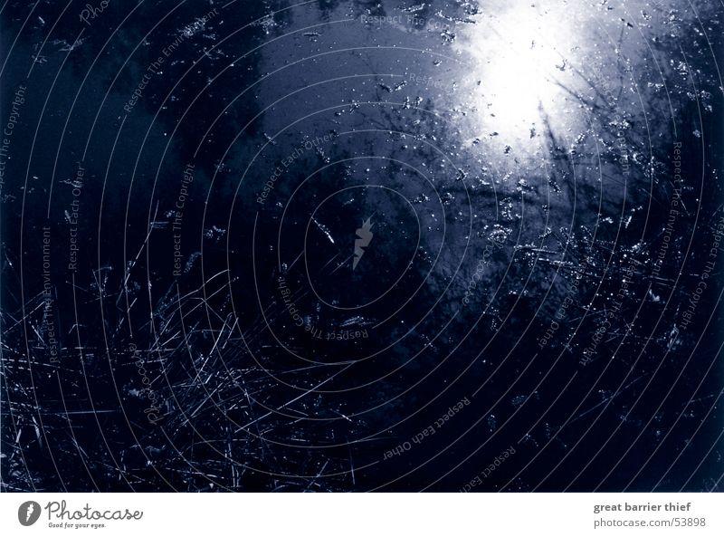 night in water Wasser Sonne blau Pflanze dunkel Stimmung Romantik Mond