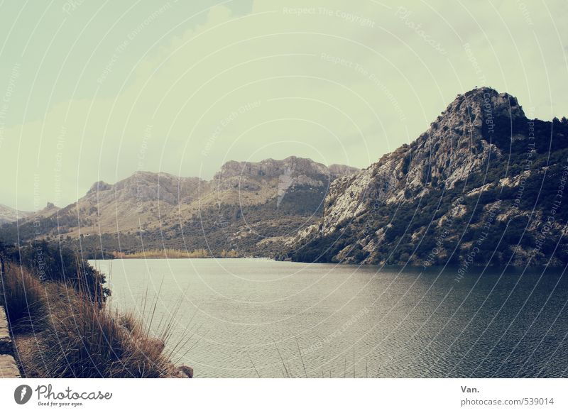 Bergsee Himmel Natur Ferien & Urlaub & Reisen Wasser Landschaft ruhig Wolken Berge u. Gebirge Frühling See Felsen Idylle Sträucher wandern