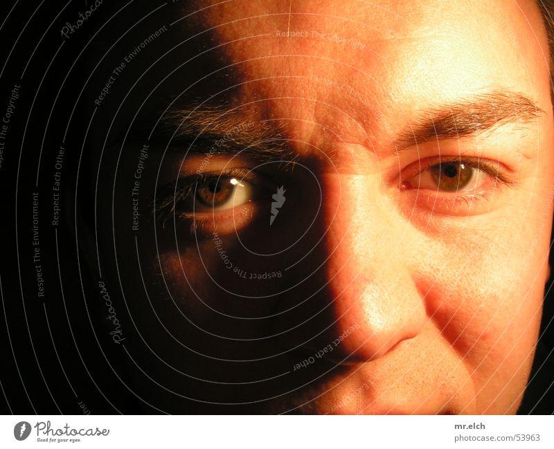 Blickfang Augenbraue braun Licht Mann maskulin Wimpern lang Mitesser Physik Nase gold Seitenlicht Gesicht Falte Haut Brand Wärme Lichterscheinung Neigung