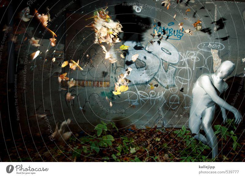der herbst kommt Mensch Natur Stadt Blatt Wald Umwelt Graffiti Herbst grau fliegen Wetter Körper maskulin Fassade Klima Politische Bewegungen