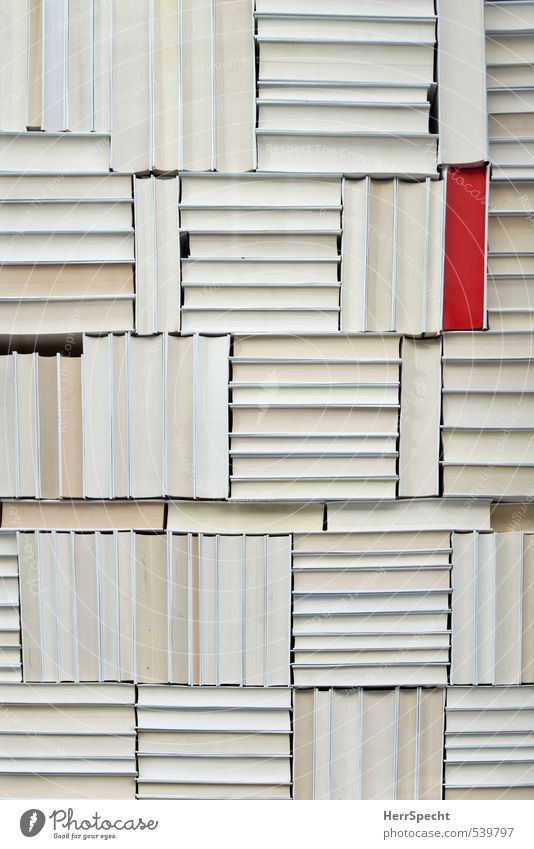 Unterscheidungsmerkmal Sammlung ästhetisch rot weiß Bücherregal Buch Stapel Papier Ordnungsliebe markant herausstechend einzigartig Gruppenzwang außergewöhnlich