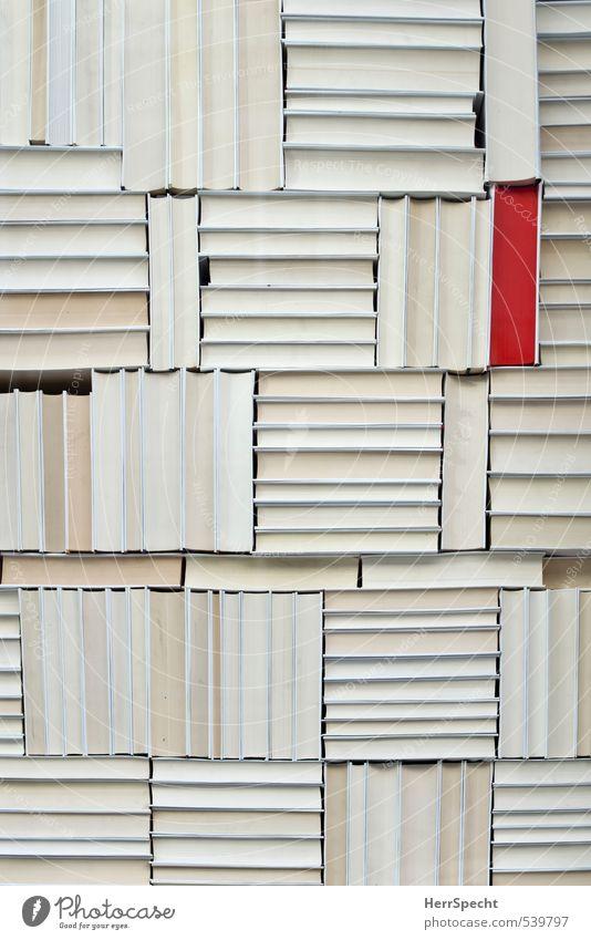 Unterscheidungsmerkmal weiß rot außergewöhnlich Ordnung Buch ästhetisch einzigartig Papier Sammlung Verschiedenheit Stapel Ordnungsliebe herausstechend markant Rückseite Bücherregal