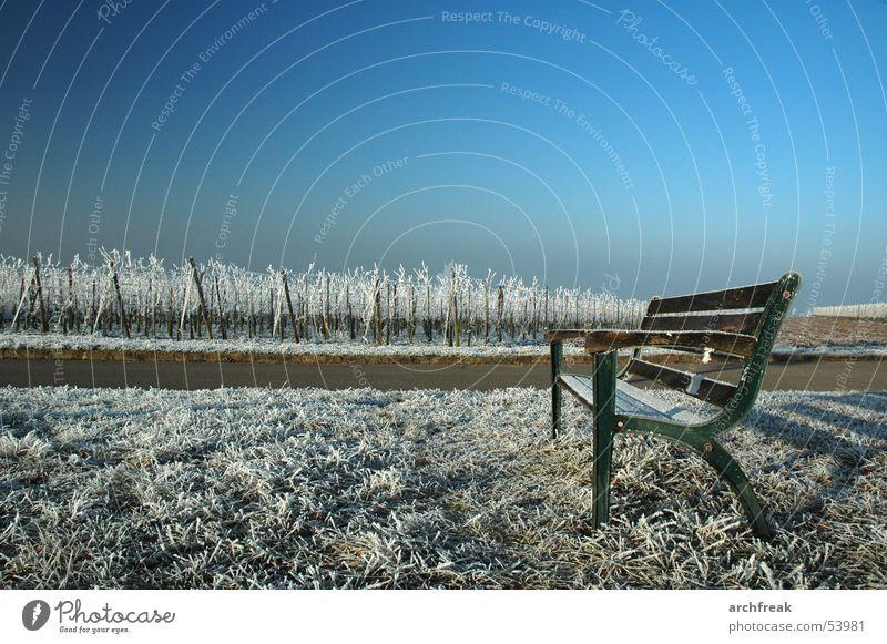 Ein badischer Morgen Himmel ruhig Erholung Wiese Berge u. Gebirge Park Landschaft Deutschland sitzen Frost Tourismus Bank Wein Schwimmen & Baden Raureif