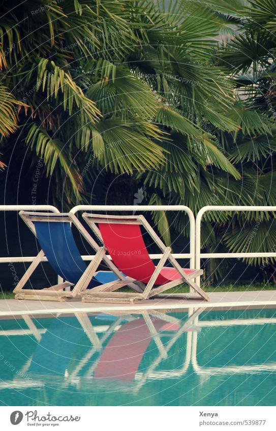 Noch zwei Plätze frei Ferien & Urlaub & Reisen Sommer Sommerurlaub Sonne Sonnenbad Schwimmen & Baden Schwimmbad Palme Liegestuhl Wasser Erholung blau grün rot