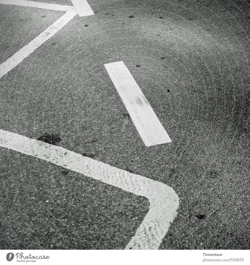 Also, das...? Straße Schilder & Markierungen ästhetisch einfach grau weiß Asphalt Linie Schwarzweißfoto Fleck Außenaufnahme Menschenleer Tag