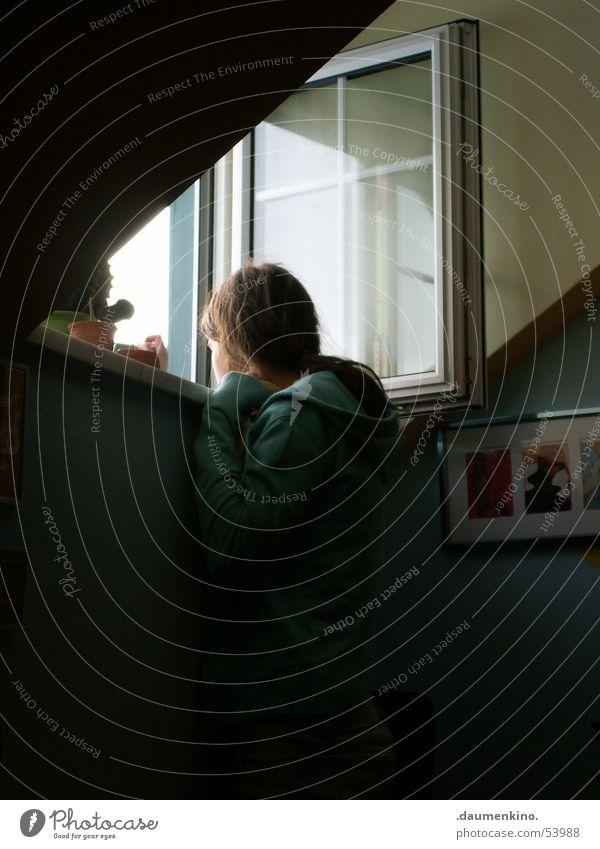 Ausblick dunkel Wand Fenster Raum Aussicht Bild Sehnsucht Bilderrahmen Kaktus