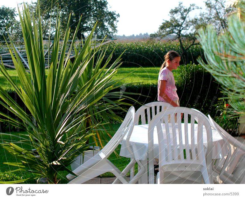 Momente Palme Sommer Herbst Indian Summer Kind Frau Maisfeld Stuhl Fototechnik Natur Garten Momentaufnahme