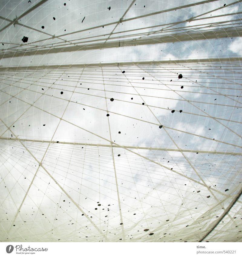 NetWork Himmel Stadt Wolken Herbst außergewöhnlich Linie Stimmung Arbeit & Erwerbstätigkeit dreckig hoch ästhetisch Brücke Vergänglichkeit Streifen Sicherheit