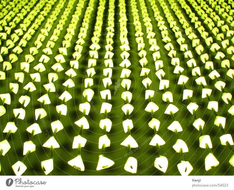 grün weiß Dekoration & Verzierung Schnur Wohnzimmer Vorhang hängen