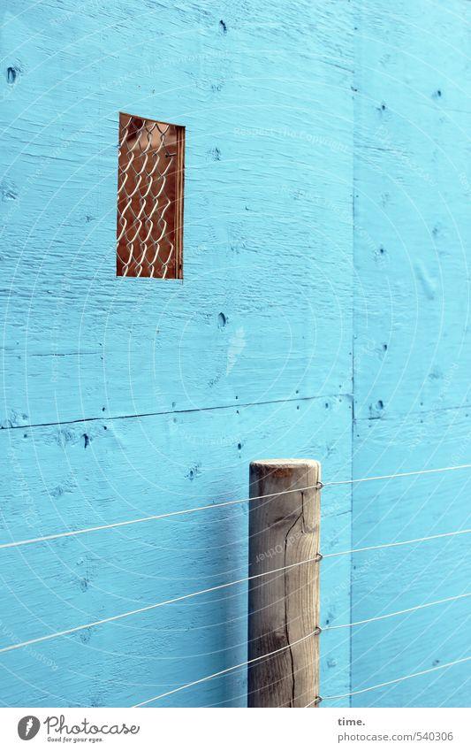 Craftman's Peepshow Baustelle Handwerk Mauer Wand Fassade Zaun Zaunpfahl Zaunlücke Draht Drahtzaun Drahtgitter Holzwand beobachten blau Kontrolle Ordnung
