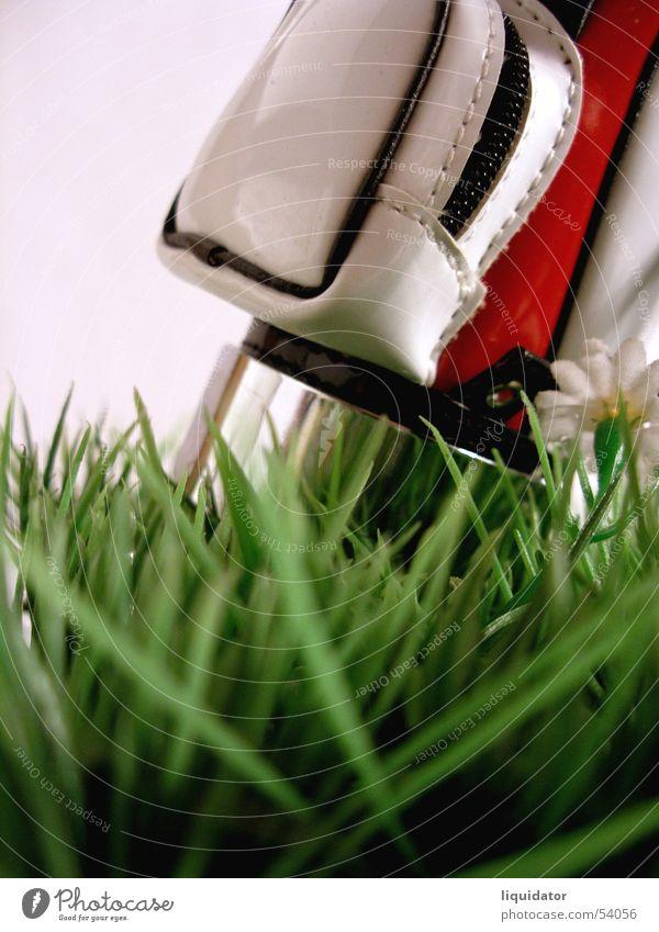 Happy golfing Golfbag Miniatur grün Golfplatz Makroaufnahme Gras Spielen Ballsport Freizeit & Hobby rasenstück Rasen