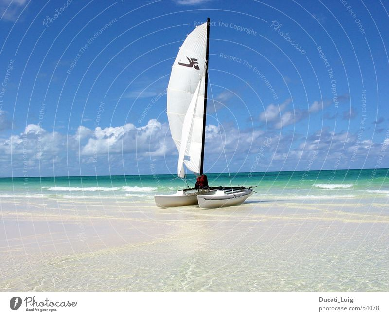 ready to go ... Sonne Meer Strand Ferien & Urlaub & Reisen Erholung Freiheit Sand Insel Schwimmen & Baden Segeln Kuba Schönes Wetter Blauer Himmel Katamaran