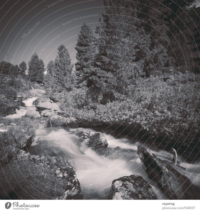Wasserkraft Tourismus Ausflug Abenteuer Ferne Freiheit Sommer Berge u. Gebirge wandern Natur Landschaft Felsen Alpen Gletscher Flussufer Bach Flüssigkeit Umwelt