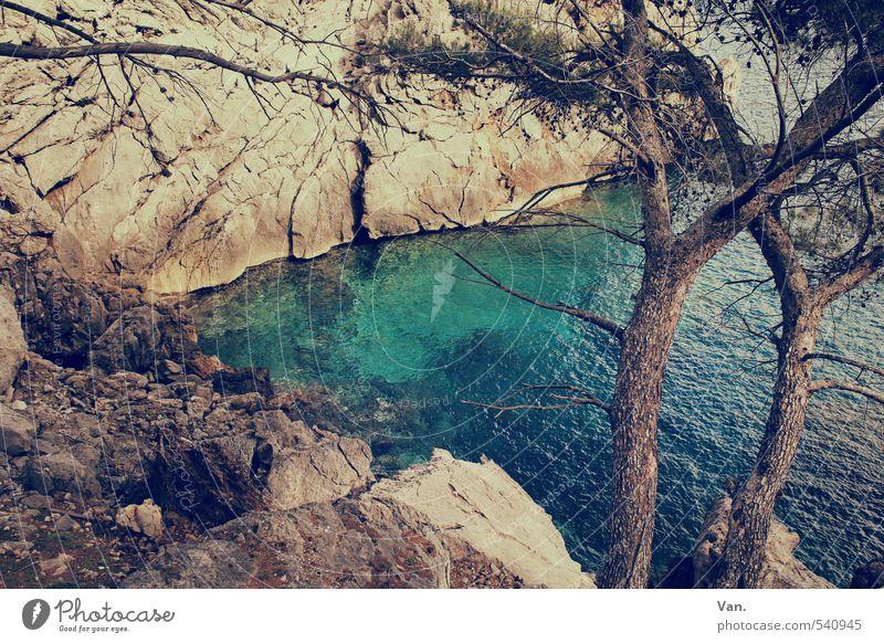 Mach mal wieder Urlaub Natur Ferien & Urlaub & Reisen blau schön Wasser Pflanze Sommer Baum Wärme Küste Felsen Erde Bucht