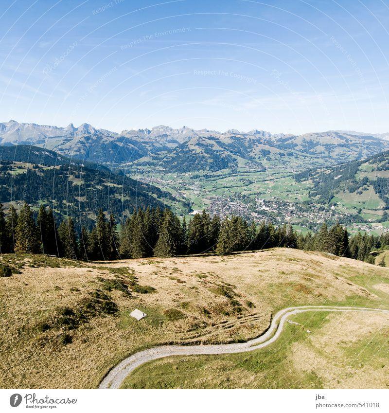 Saanenland Sommer Erholung Landschaft ruhig Ferne Umwelt Berge u. Gebirge Wärme Leben Herbst fliegen Zufriedenheit Tourismus wandern Schönes Wetter Alpen