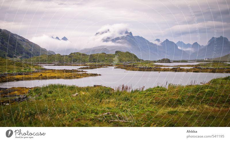 Stillleben Wolken Gras Sträucher Berge u. Gebirge Fjord Meer Stimmung friedlich trösten Gelassenheit Sehnsucht Fernweh Zufriedenheit Stress Fürsorge