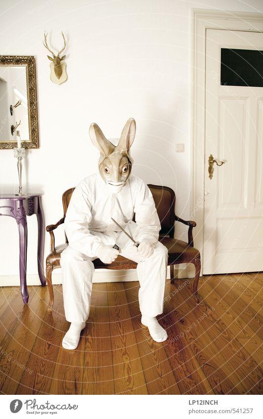 LP´s Anatomy Häusliches Leben Wohnung Möbel maskulin Junger Mann Jugendliche 1 Mensch 18-30 Jahre Erwachsene 30-45 Jahre Tier Hase & Kaninchen Jagd Aggression