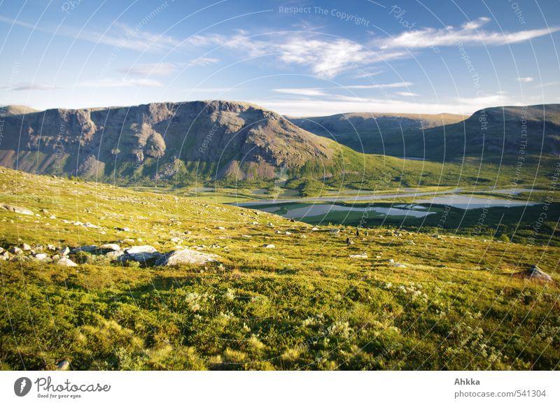 perfect day Ferne Natur Landschaft Schönes Wetter Gras Sträucher Wiese Berge u. Gebirge Tal Stimmung Freude Glück Fröhlichkeit Zufriedenheit Lebensfreude