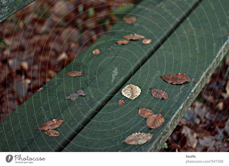 Braune Herbstblätter auf einer dunkelgrünen Holzbank im November Novemberbild Herbstmelancholie Novembermelancholie melancholisch nostalgisch Melancholie