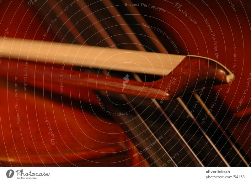 Violine und Bogen Geige Musik Klassik Saite Orchester violin fiddle Klang Ton bow Detailaufnahme classic string orchestra