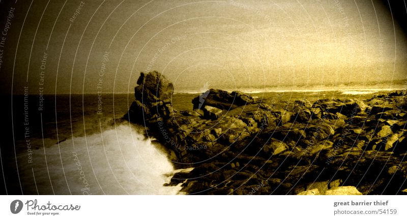 wilderness Meer Wellen Küste Felsen Wildtier Brandung Schaum Rauschen