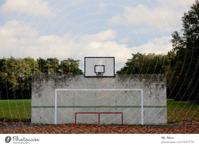 PlayStation Lifestyle Spielen Sport Ballsport Umwelt Natur Himmel Wolken Herbst Schönes Wetter Baum Blatt Wiese Mauer Wand Basketball Basketballkorb Linie