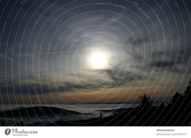 Blue Sun Baum Sonne Wolken Berge u. Gebirge Horizont Wind Nebel Thüringen