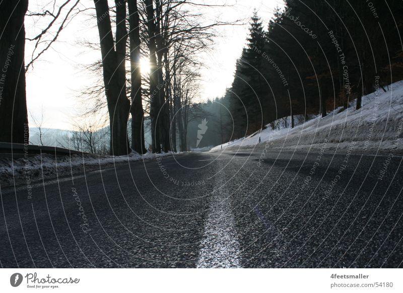 Way of Life Baum Sonne Straße Wald Schnee Schilder & Markierungen Thüringen