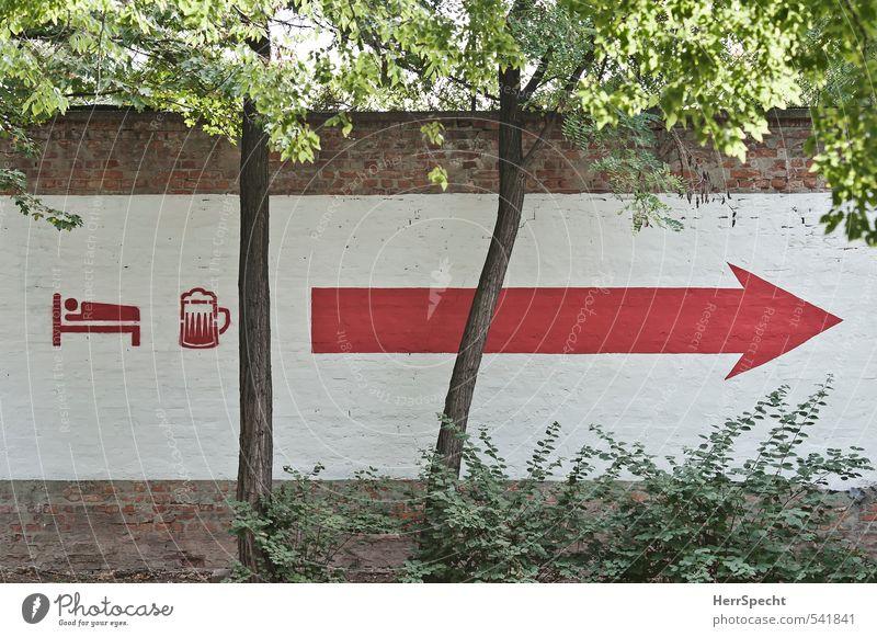 B(ett) & B(ier) --------> Ferien & Urlaub & Reisen weiß Pflanze Baum rot Wand Mauer Tourismus Schriftzeichen Hinweisschild Zeichen Bett Bier Pfeil Sommerurlaub