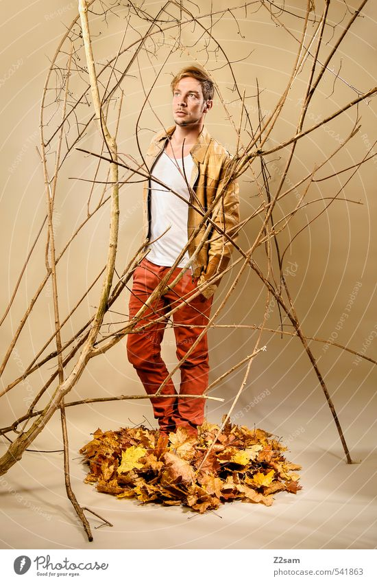 Fall 2013 Lifestyle elegant Stil maskulin Junger Mann Jugendliche Mensch 18-30 Jahre Erwachsene Herbst Sträucher Ast Blatt Herbstlaub Mode T-Shirt blond