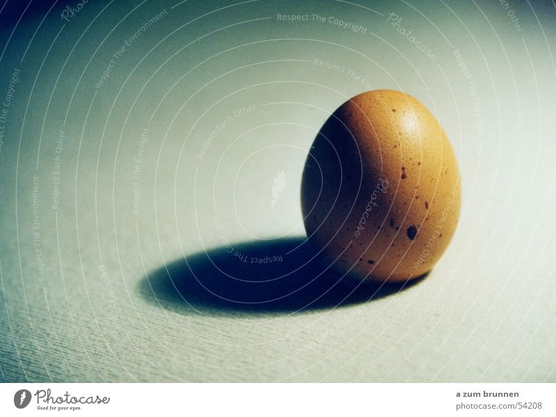 Eibraun einfach Ei