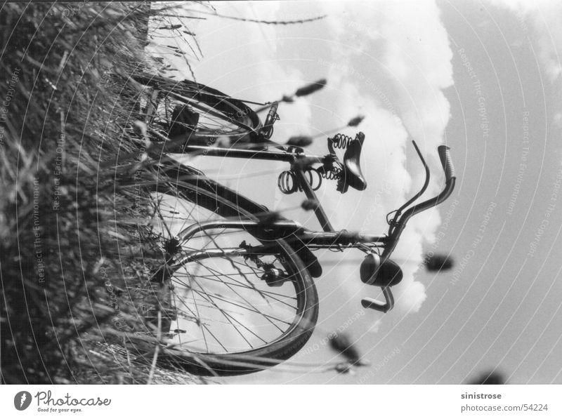 mei radl Sommer Wiese Fahrrad