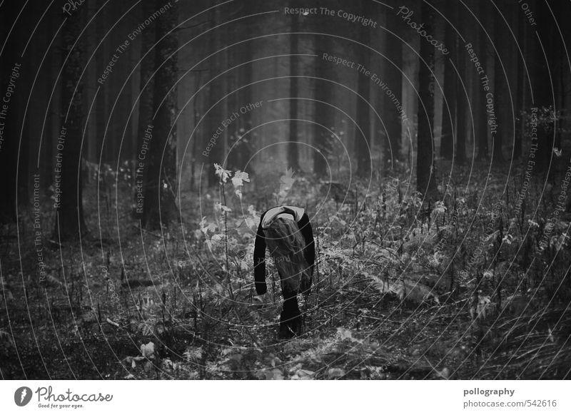 hang up Mensch feminin Junge Frau Jugendliche Erwachsene Leben Körper 1 18-30 Jahre Natur Landschaft Pflanze Herbst Schönes Wetter Baum Sträucher Wald Pullover